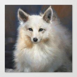 Wild Animal Art White Fox Quirky And Unique Canvas Print