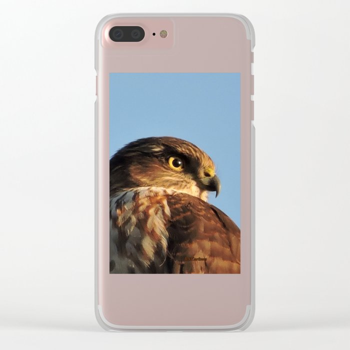Young Cooper's Hawk Clear iPhone Case