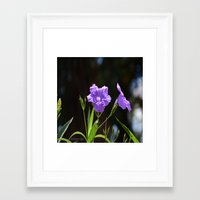 alone Framed Art Prints featuring Alone by BeachStudio