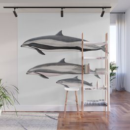 Fraser´s dolphin Wall Mural