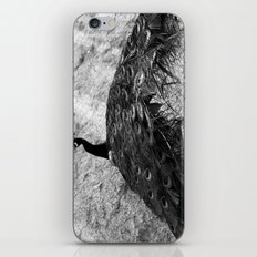 Show Off BW iPhone Skin