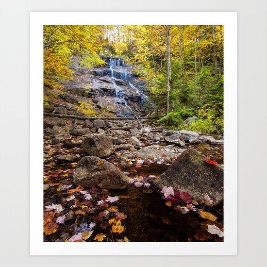 secret falls Art Print