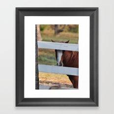 peeking Framed Art Print