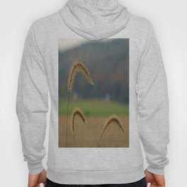 Grass Seed Stalks Hoody