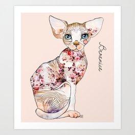 Berenice the sphynx Art Print