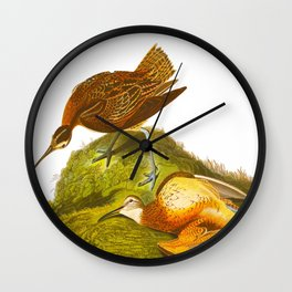 Esquimaux Curlew John James Audubon Scientific Illustration Birds Of America Drawings Wall Clock