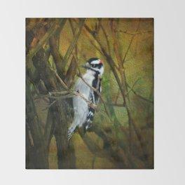 Downy Woodpecker Throw Blanket