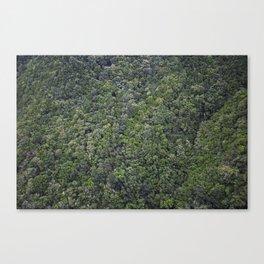 greenwood , Tenerife Island Canvas Print