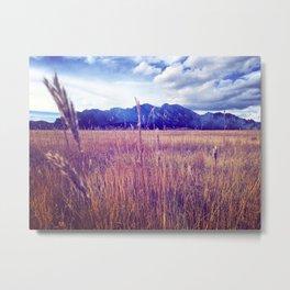 Colorado Tall Grass Metal Print