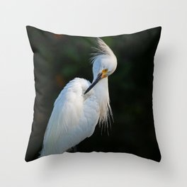 Obsessive Issues  Throw Pillow