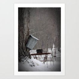 Sugaring 3 - Maple Syrup Art Print