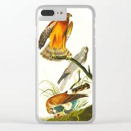 Marsh Hawk Clear iPhone Case