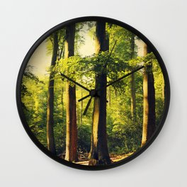 Forest in Evening Light Wall Clock