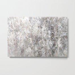 Fireweed Fluff Metal Print