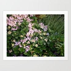 Garden on Film 1.1 Art Print