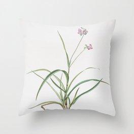 Vintage Spiderwort Illustration Throw Pillow