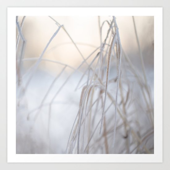 Beautiful Winter Morning Art Print