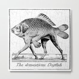 If fishes had legs Metal Print