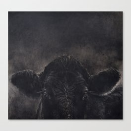 Tinsi cow Canvas Print