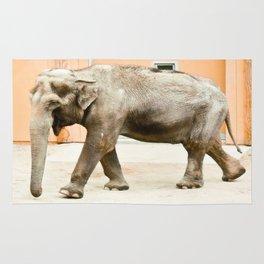 Smiling Elephant Rug