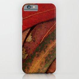 Eucalyptus Tree Leaves iPhone Case
