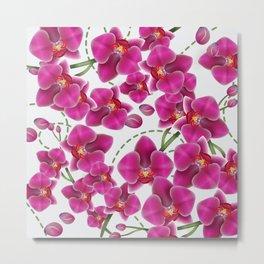 Fuchsia Pink Moth Orchids Metal Print