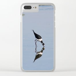 Black-winged stilt in a pool Clear iPhone Case