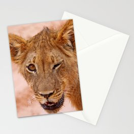 Winking lion - Africa wildlife Stationery Cards