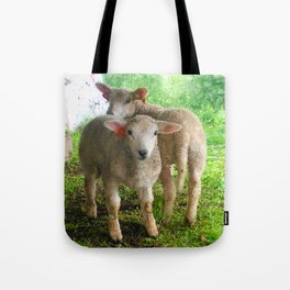 Two small helpers Tote Bag