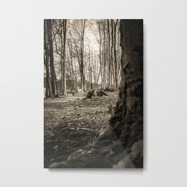 Moss Covered Tree Stump Hiking Path Forest sepia Metal Print