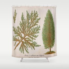 Biota Hybrid Evergreen Vintage Botanical Floral Flower Plant Scientific Shower Curtain