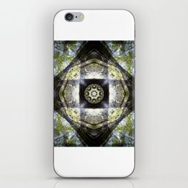 Humboldt Redwoods State Park: Chandler Grove iPhone Skin