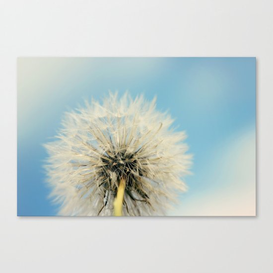 A Better Way to Fly Canvas Print