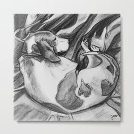 Hound Sleeping Sound Metal Print