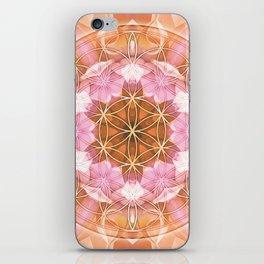 Flower of Life Mandalas 18 iPhone Skin