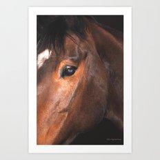 Soul Of The Horse Art Print
