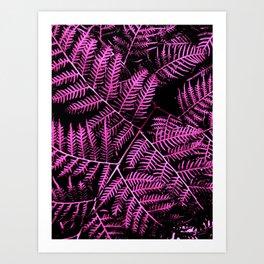Boysenberry Bracken Art Print