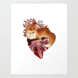 Red Fox and Ruby Art Print