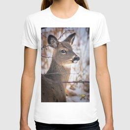 January Whitetail T-shirt