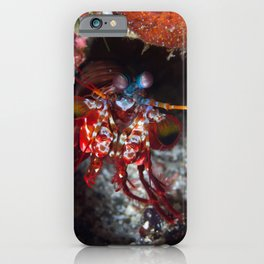 Welcome Mantis Shrimp iPhone Case