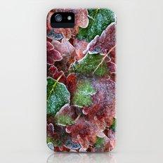 Christmas Slim Case iPhone (5, 5s)