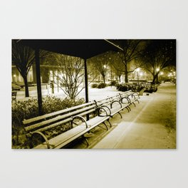 Winter Classic Canvas Print