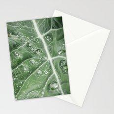 Rain water on a Purple Cauliflower leaf. Norfolk, UK. Stationery Cards