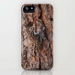 Brown Creeper Nuthatch iPhone Case