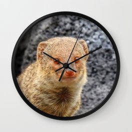 Mongoose Wall Clock