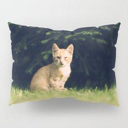 One Eyed Cat Pillow Sham