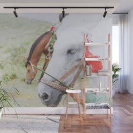 horse by pan zhen Wall Mural