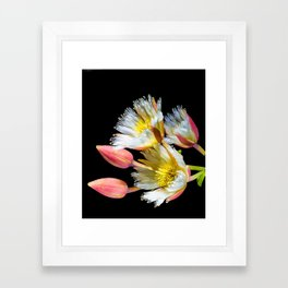 Bold and Wild Flowers Framed Art Print