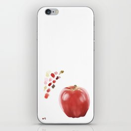Apple Study with Palette iPhone Skin