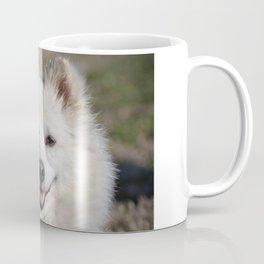 American Eskimo Coffee Mug